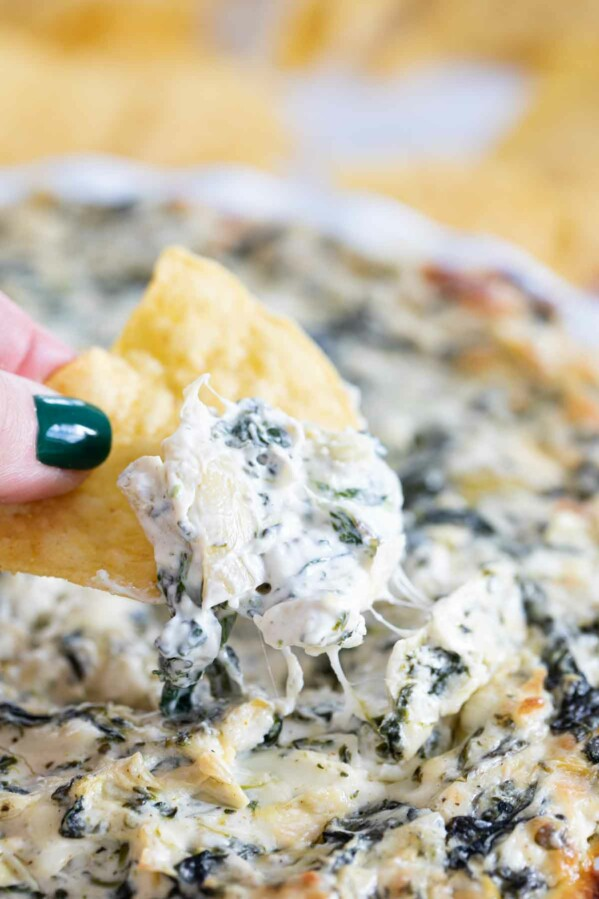 scooping spinach artichoke dip on a tortilla chip