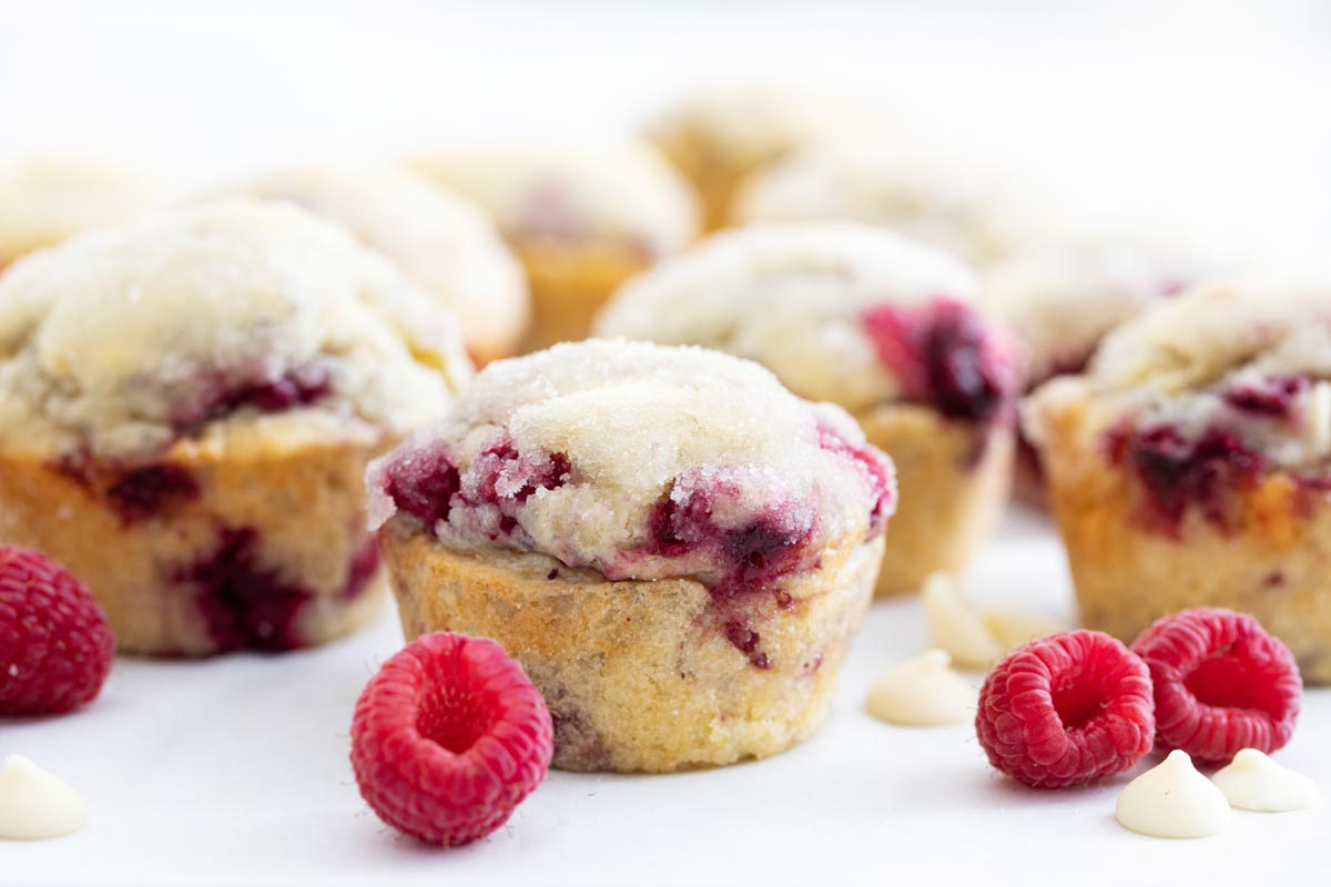 raspberry muffins with white chocolate chips with fresh raspberries
