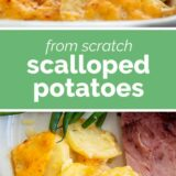 Scalloped Potatoes with text in the center
