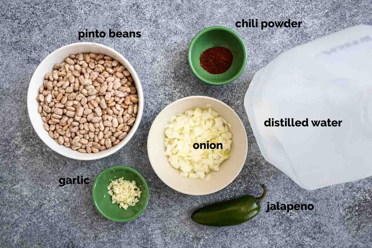 ingredients needed to make pinto beans in the instant pot